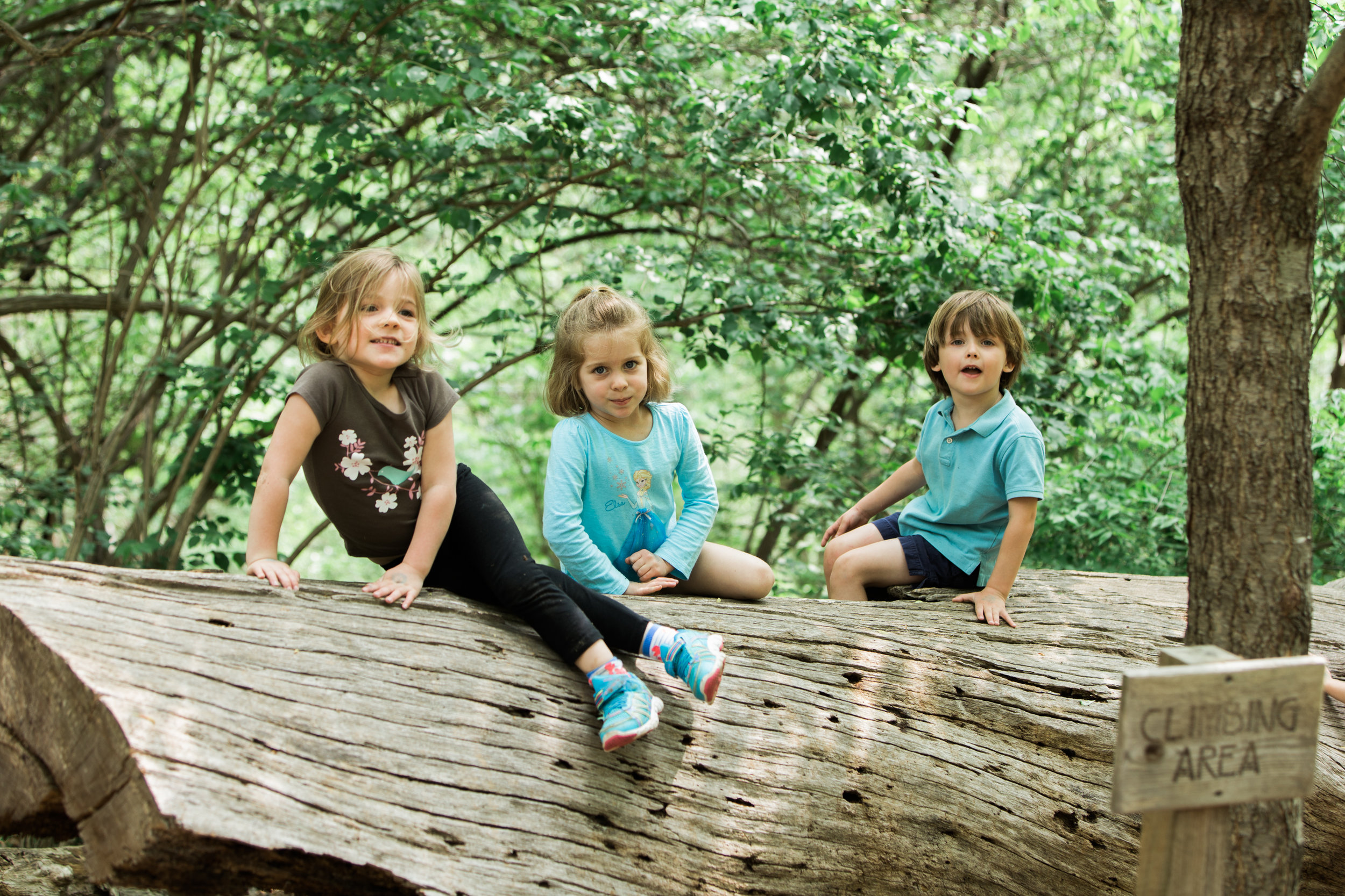 Three pre-school children in Christ Church Episcopal Preschool's outdoor classroom on log