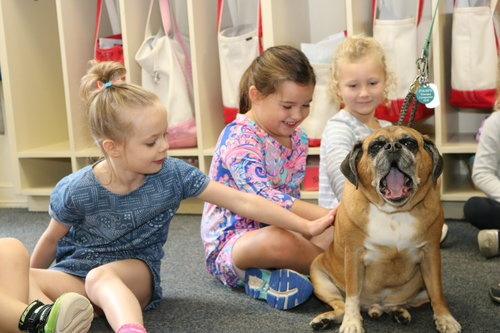Pre K preschoolers with rescue dog