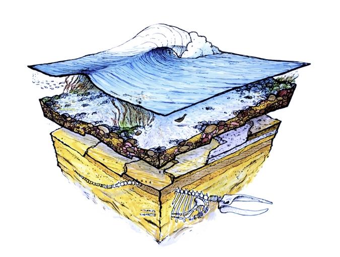 Sea Levels810.jpg