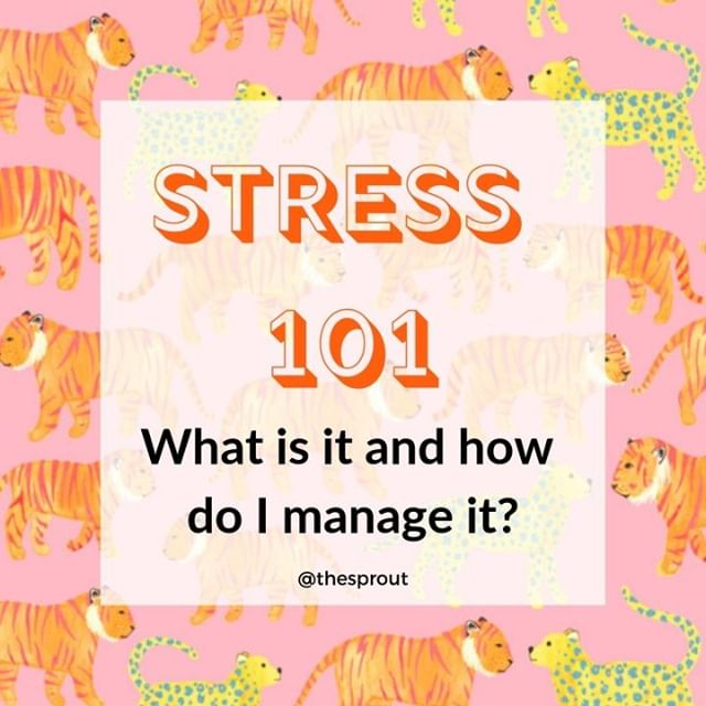 """🐯STRESSSSSSS🐯  Buzzword alert 🚨 wondering WTF stress even is and how it affects your body? Wondering how to manage it to make it a little less disruptive to your day to day life?   I've got a free downloadable on my website to teach you alllll of the things. Just head to the link in my bio and search """"stress"""". 🐆 . . . . . . #perthnutrition #perthnutritionist #teenhealth #teenwellness #perthteens #perthpcos #pcosperth #perthwellness #whatnutritionistseat #nutritionexpert #healthexpert #holistichealth #hormonalhealth #nutrition #teeninperth #nutritionistrecipe #perthlife #bopo #originalcontent #perthhealthcoach #lifestylecoach #intuitiveeating"""