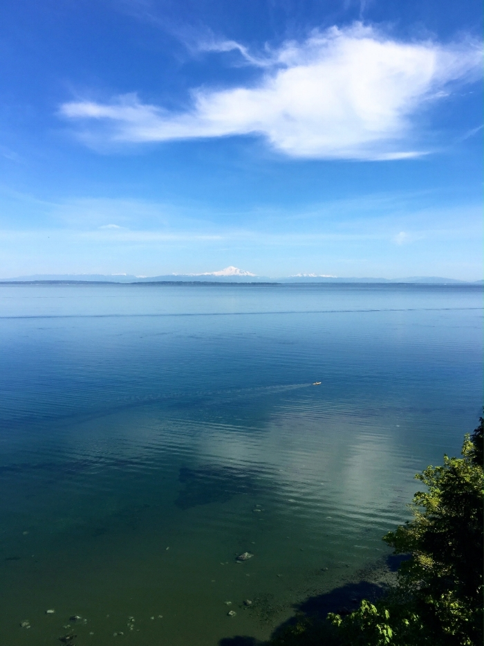 Boundary Bay from Lily Point Marine Reserve, Point Roberts, WA  © Adele Jacques 2016