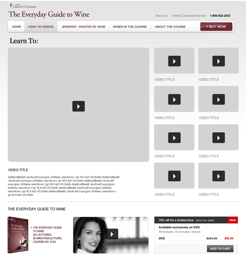 Website wireframe skinning