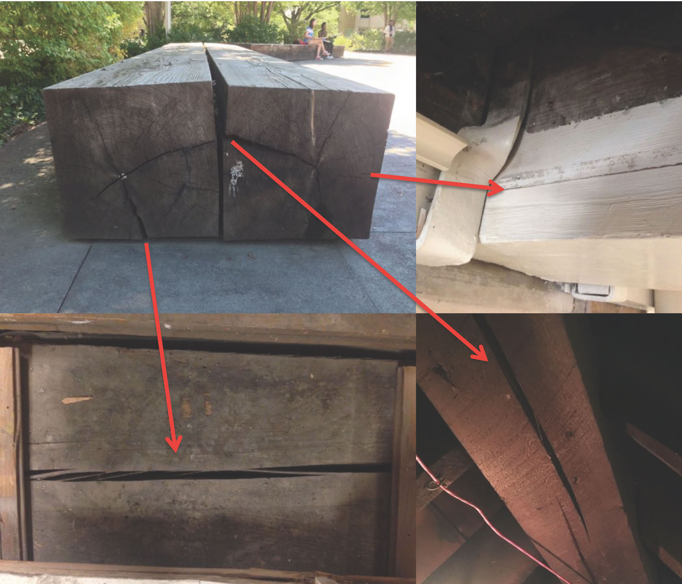Upper left image shows two large timber benches with visible splits on both ends as a result of seasoning. These are considered normal. Each of the red arrows points to how the checks would look in-situ.