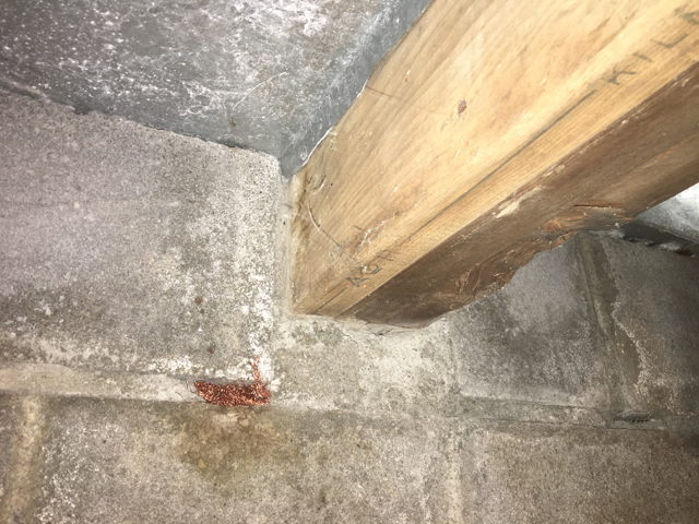 Photo 5 - Untreated lumber embedded in the foundation wall of the first level floor system. Significant wood decay and termite damage was detected inside the pocket by testing the built up girder with the Resistograph.