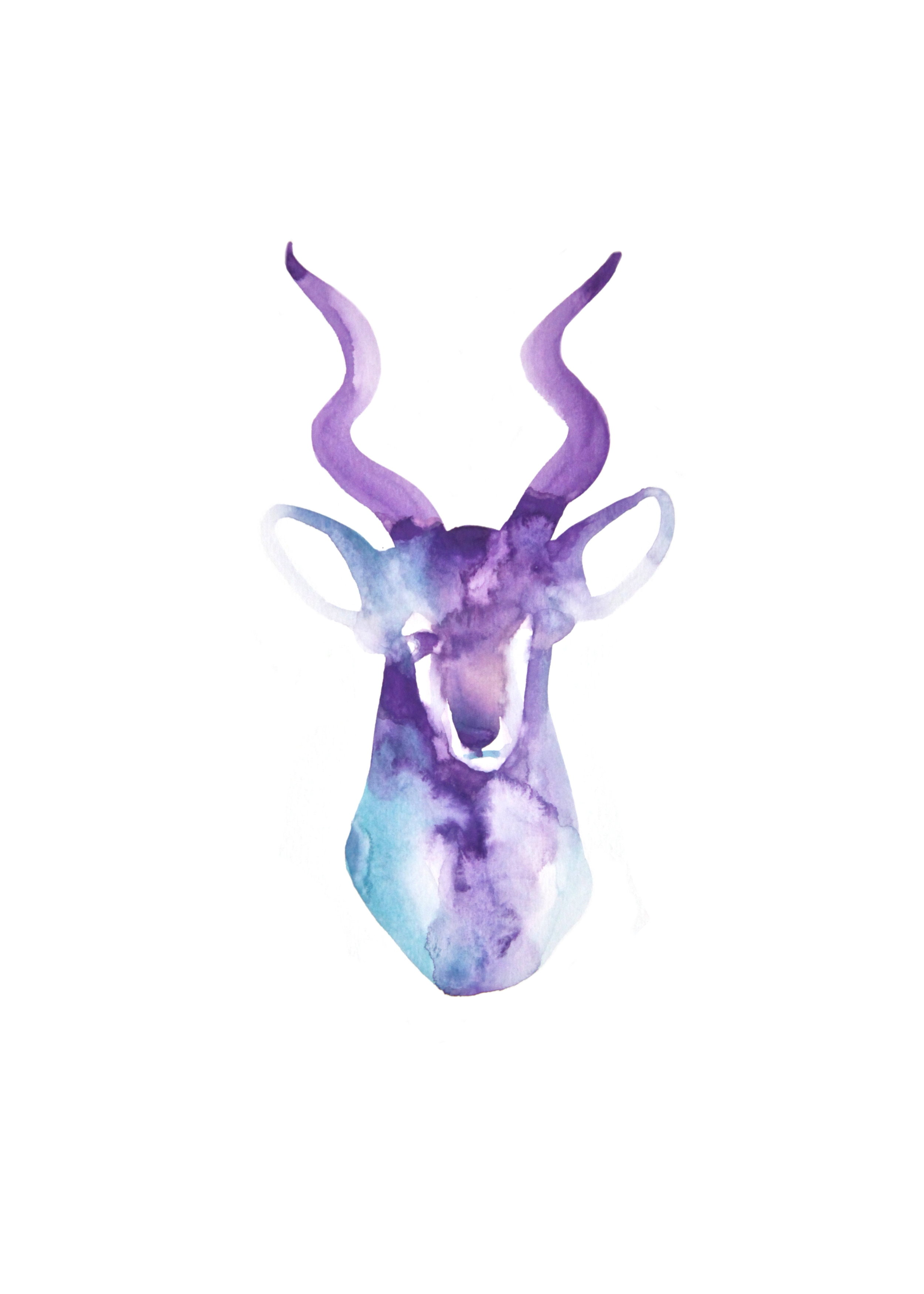 Tête violette-Cerf  , 2016,     watercolor on paper, 29,8x41cm, private collection