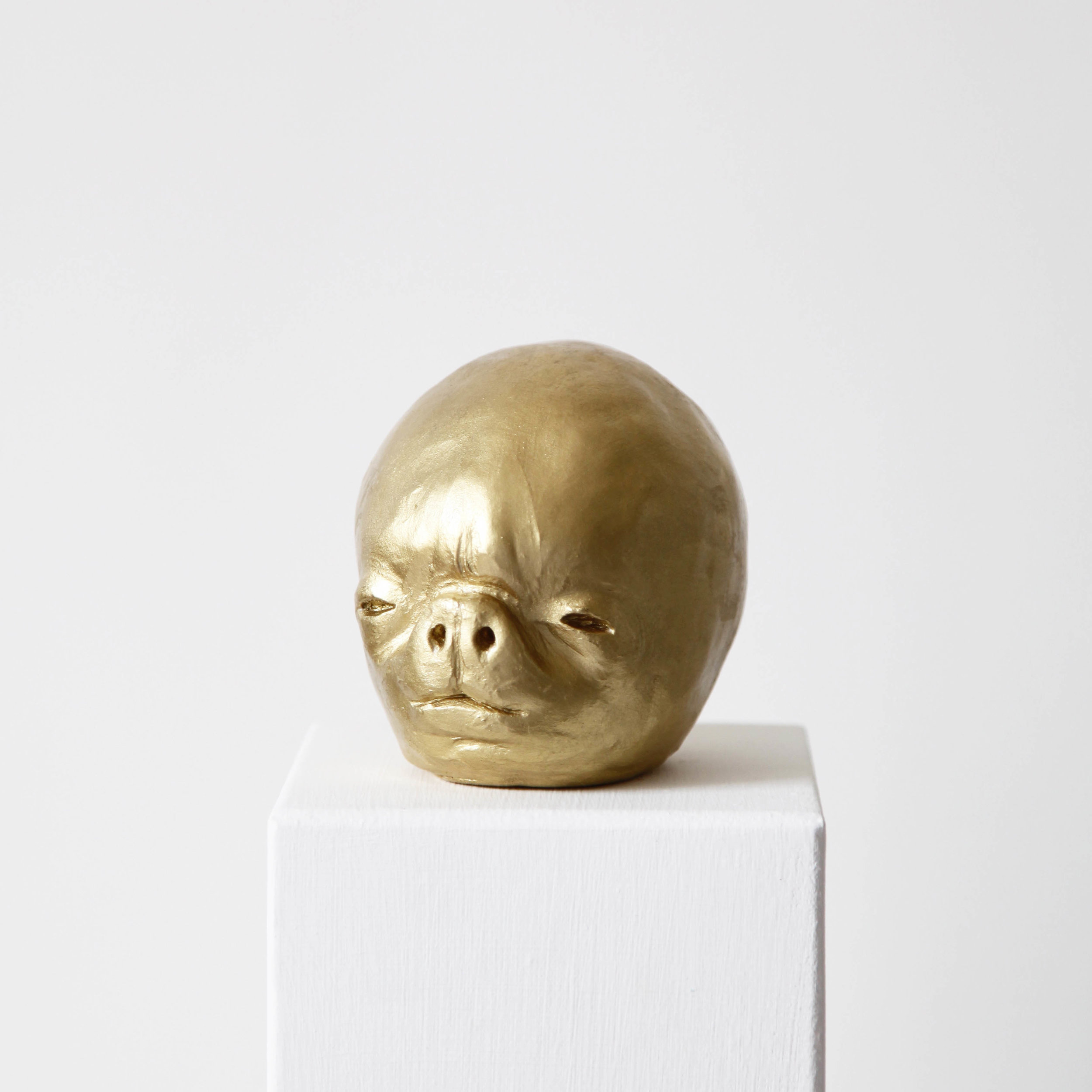 Facial development of the human embryo III  , 2017, raw clay, yellow gold pigment, lacquer and varnish, 10,6x12x9,5cm