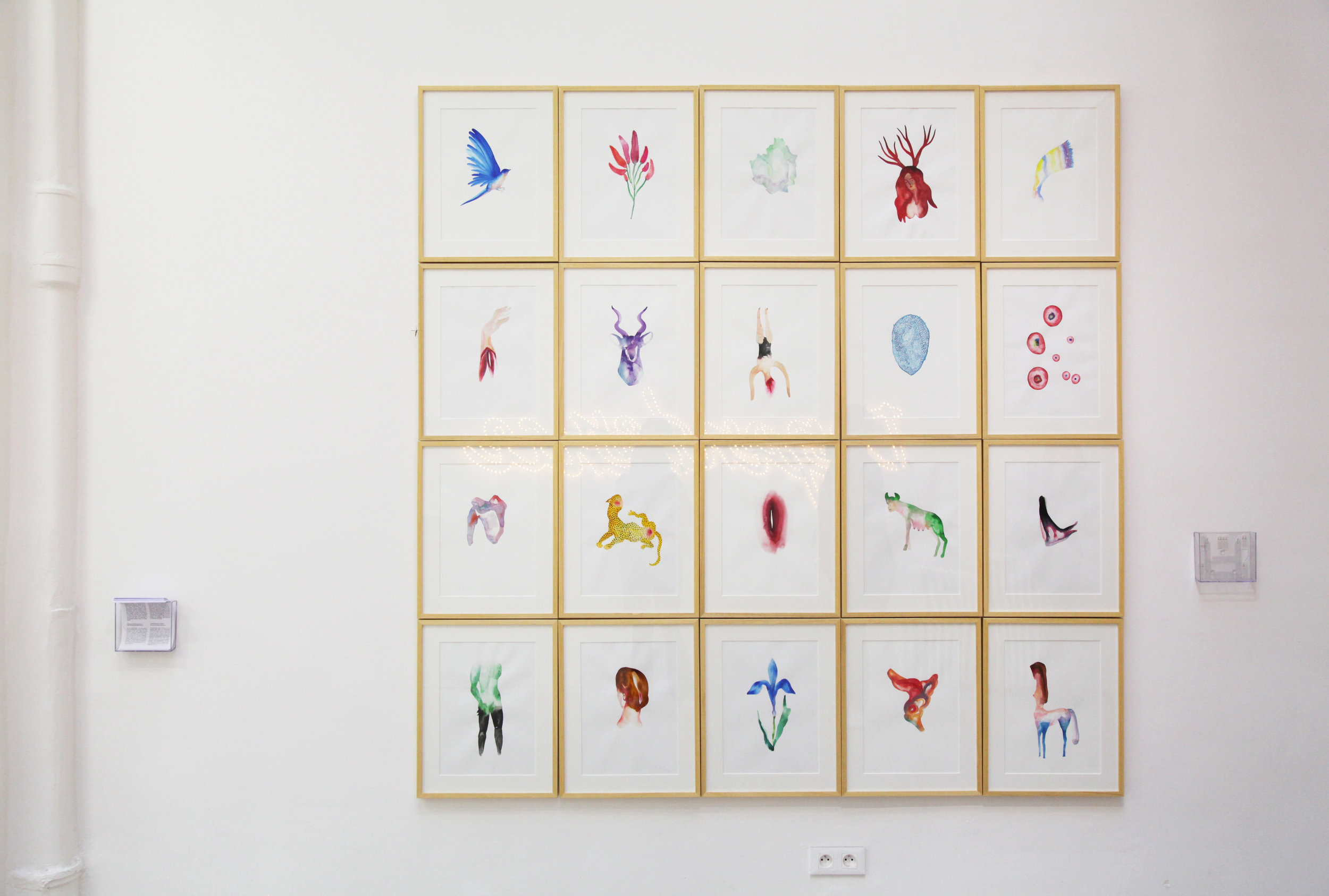 Daphné  , 2016, Installation made of 20 watercolor drawing on paper, 212,5x210cm, courtesy Choi&Lager Gallery
