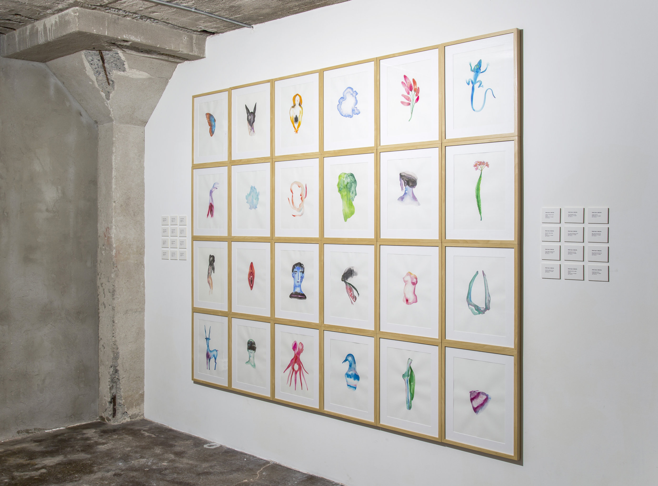 Journey of a dead hunter  , 2016, installation made of 24 watercolor drawings on paper, 210x255cm  Photo credit: Darla Nam