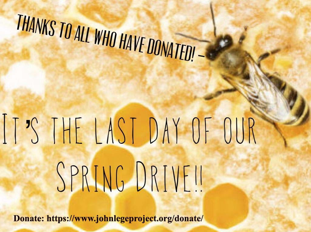 Bee passionate:) Donate! We'll set up Apiaries in Uganda, Eastern Congo and Cameroun.