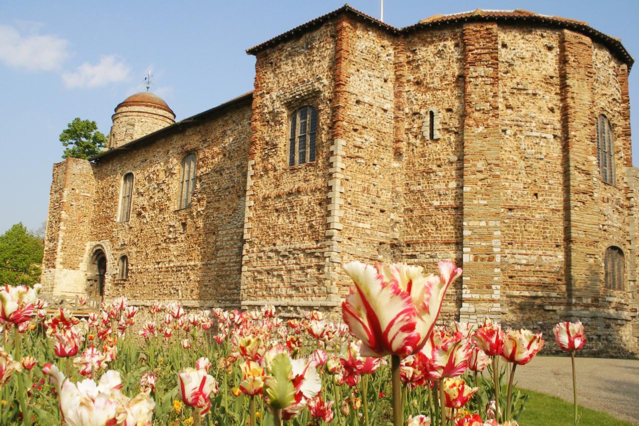 Colchester Castle -  Source
