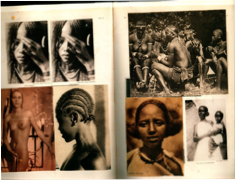 Figure 2. Pages from Hannah Höch's  Album  (  Scrapbook  ), 1933. Scan from  Hannah Höch album  . Ostfildern-Ruit: Hatje Cantz Verlag. 2004. n. pag.