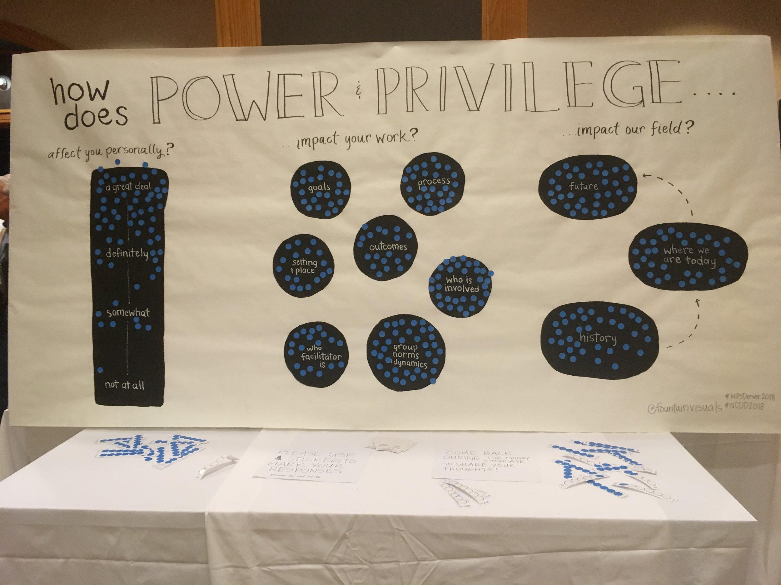 PowerPrivilege1_LydiaHooper.JPG