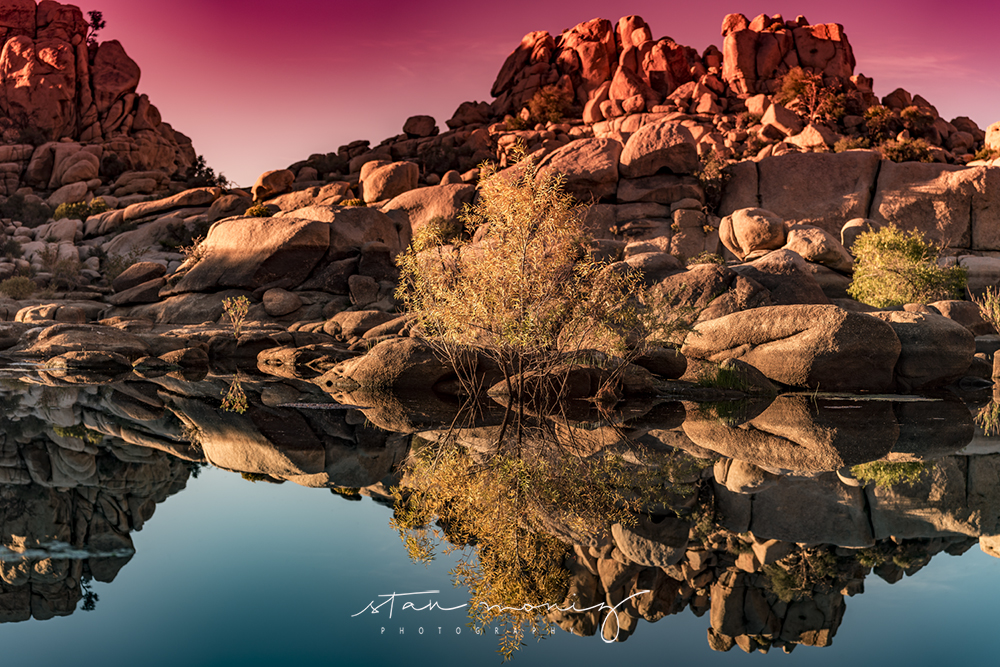 BARKER-DAM-2-JOSHUA-TREE-FALL-SEASON-STAN-MONIZ-PHOTOGRAPHY.jpg