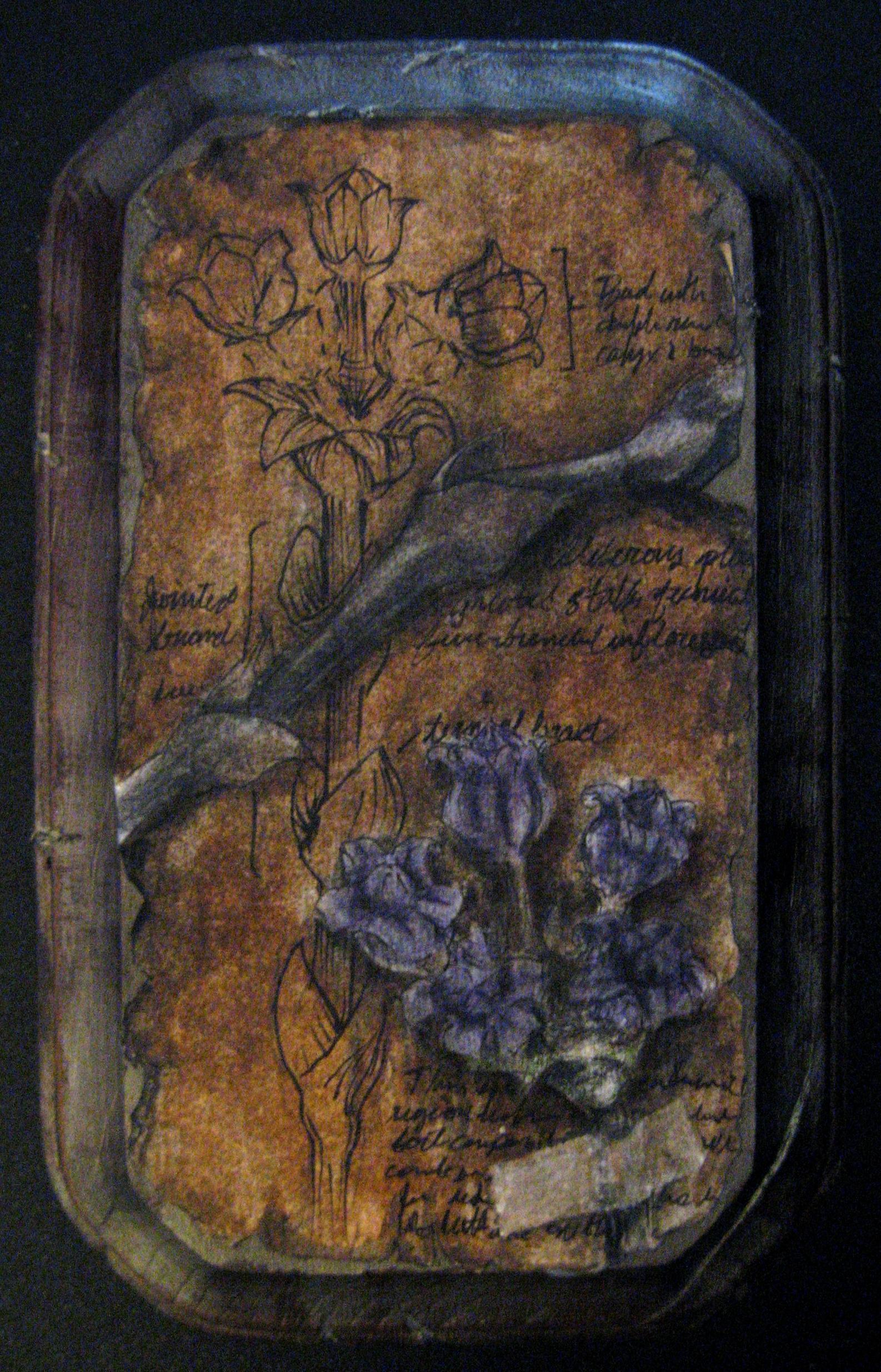 specimens 003.jpg
