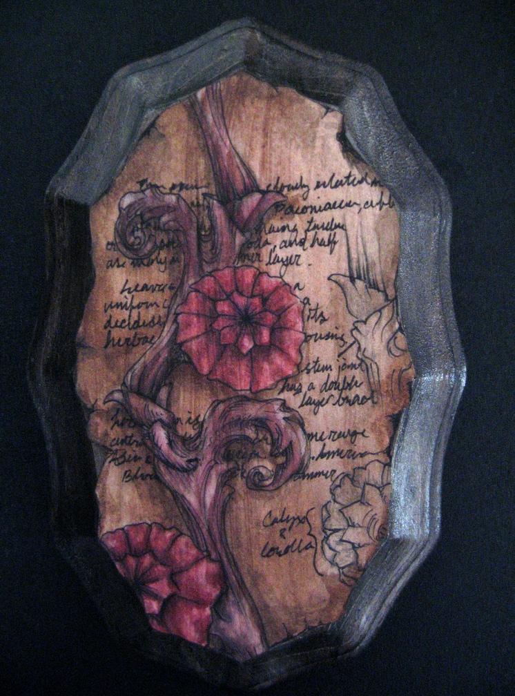 plant specimen 003.jpg