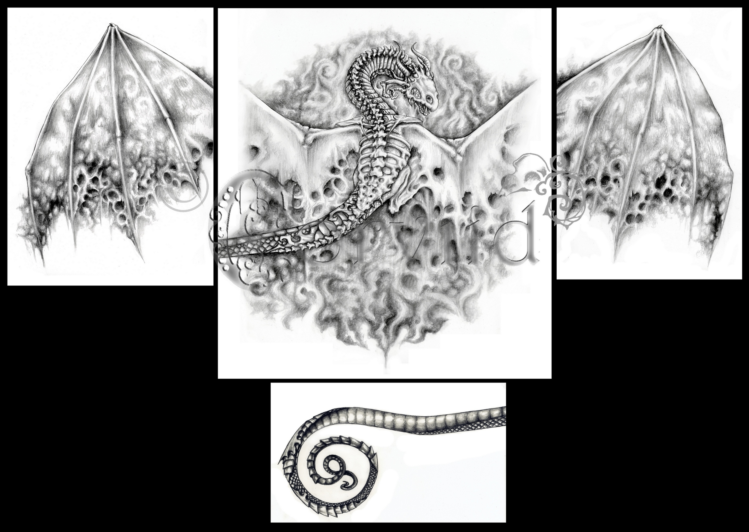 Dragon arm & chest piece