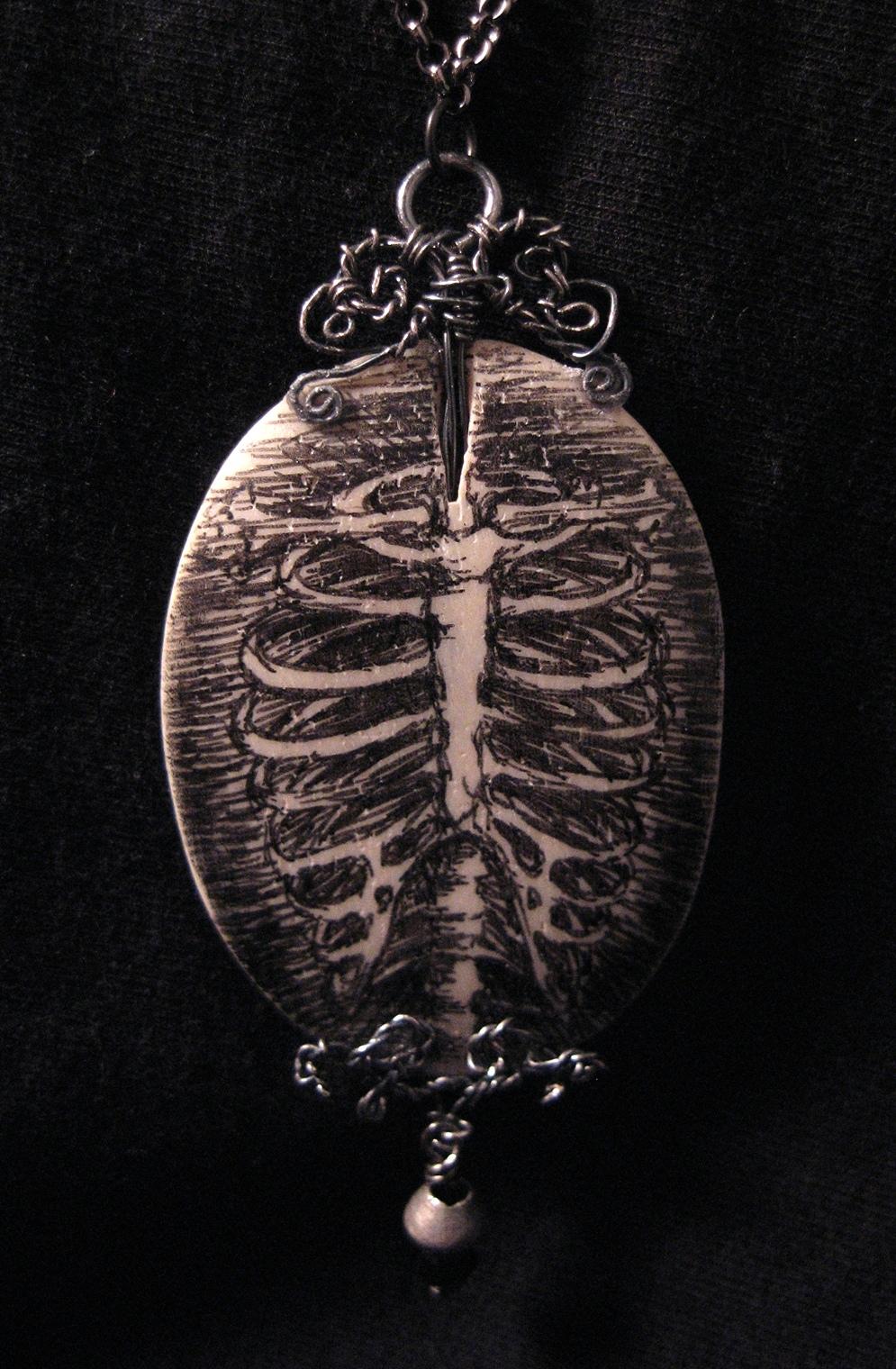 anatomical ribcage 01.jpg
