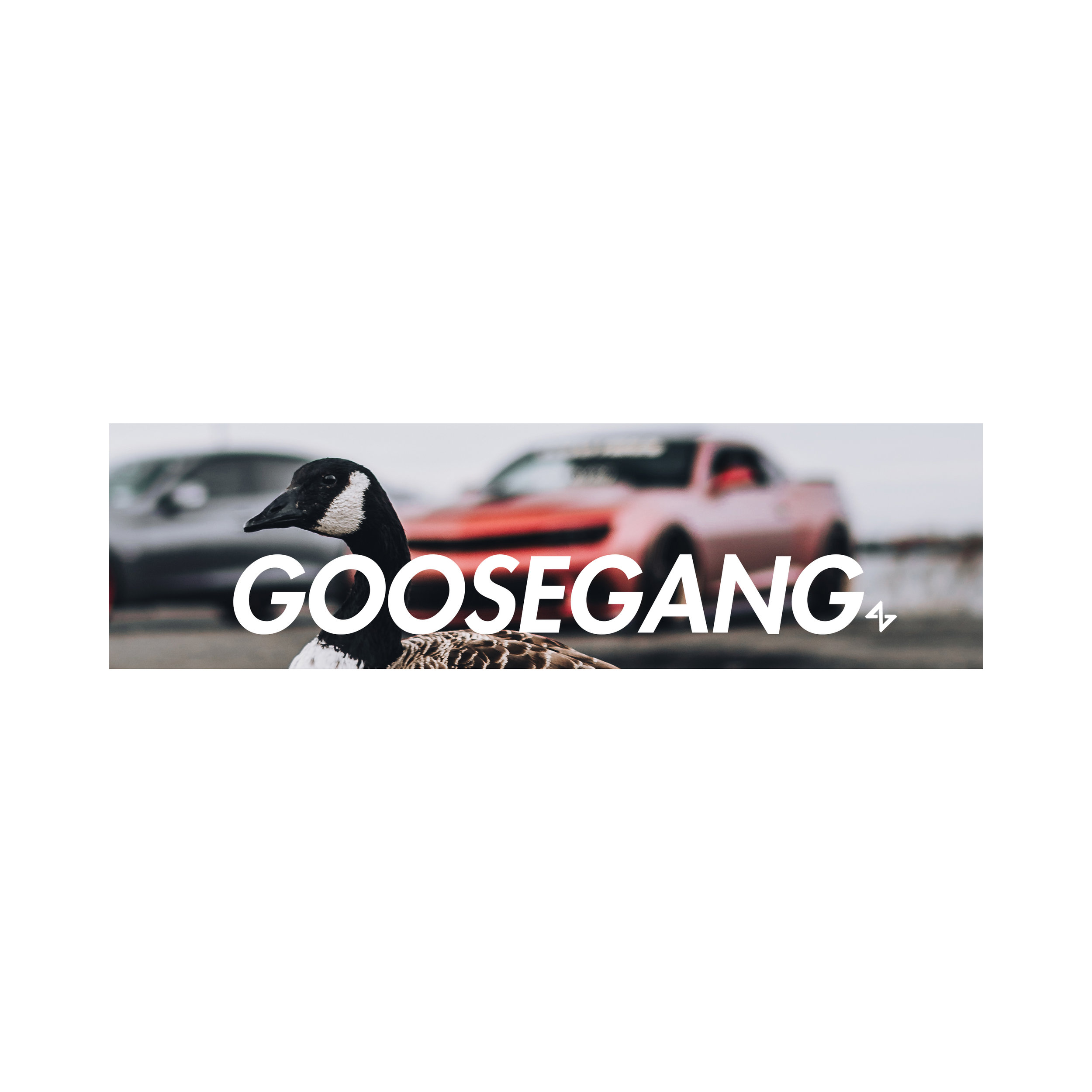 Goose Gang