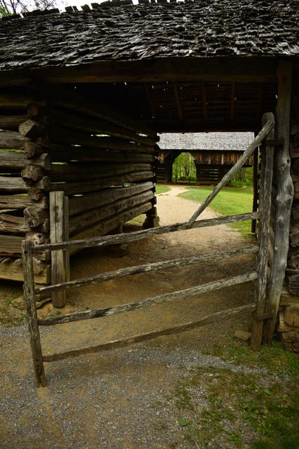 Smoky Mountains Heidi-0762.jpg