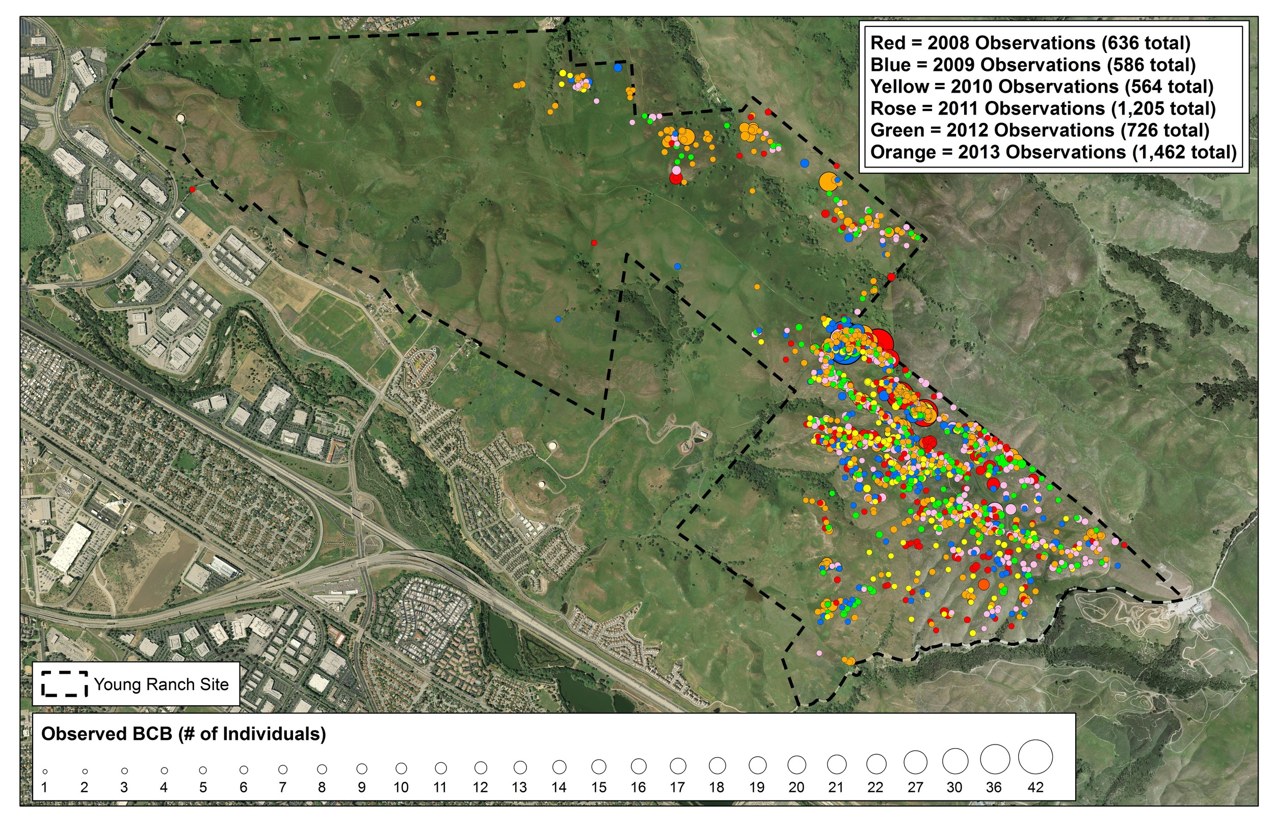 Figure 3.  Bay checkerspot butterfly occurrences on Young Ranch