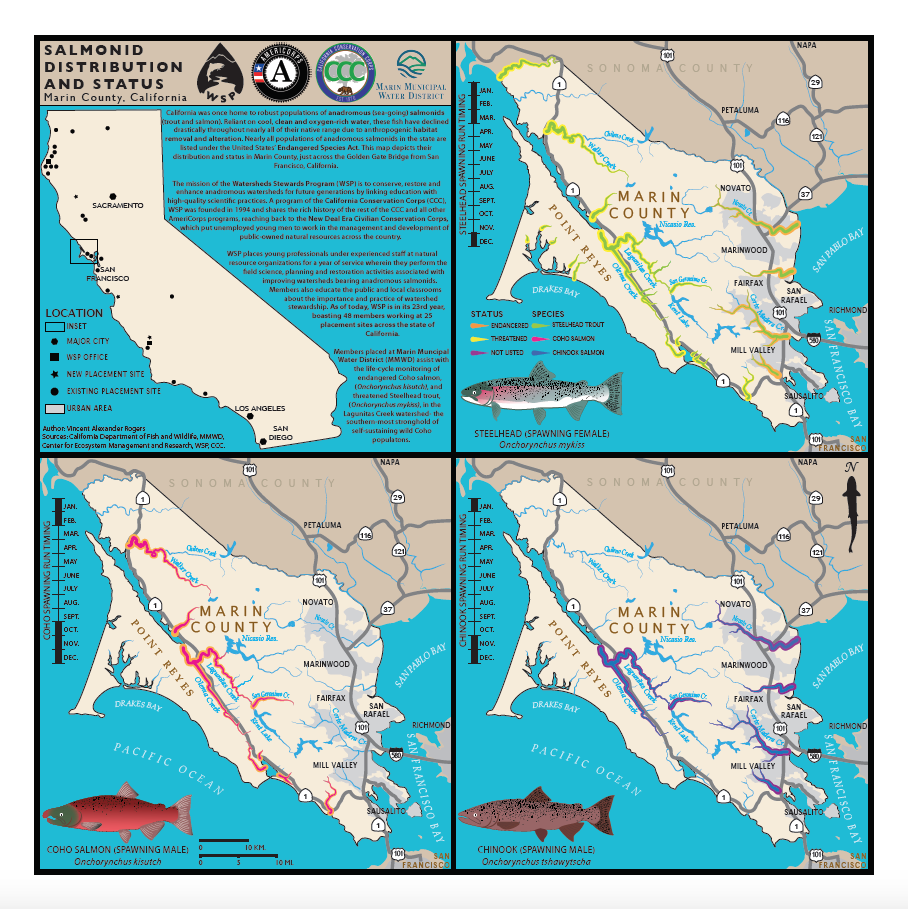 Marin County Salmonids.png