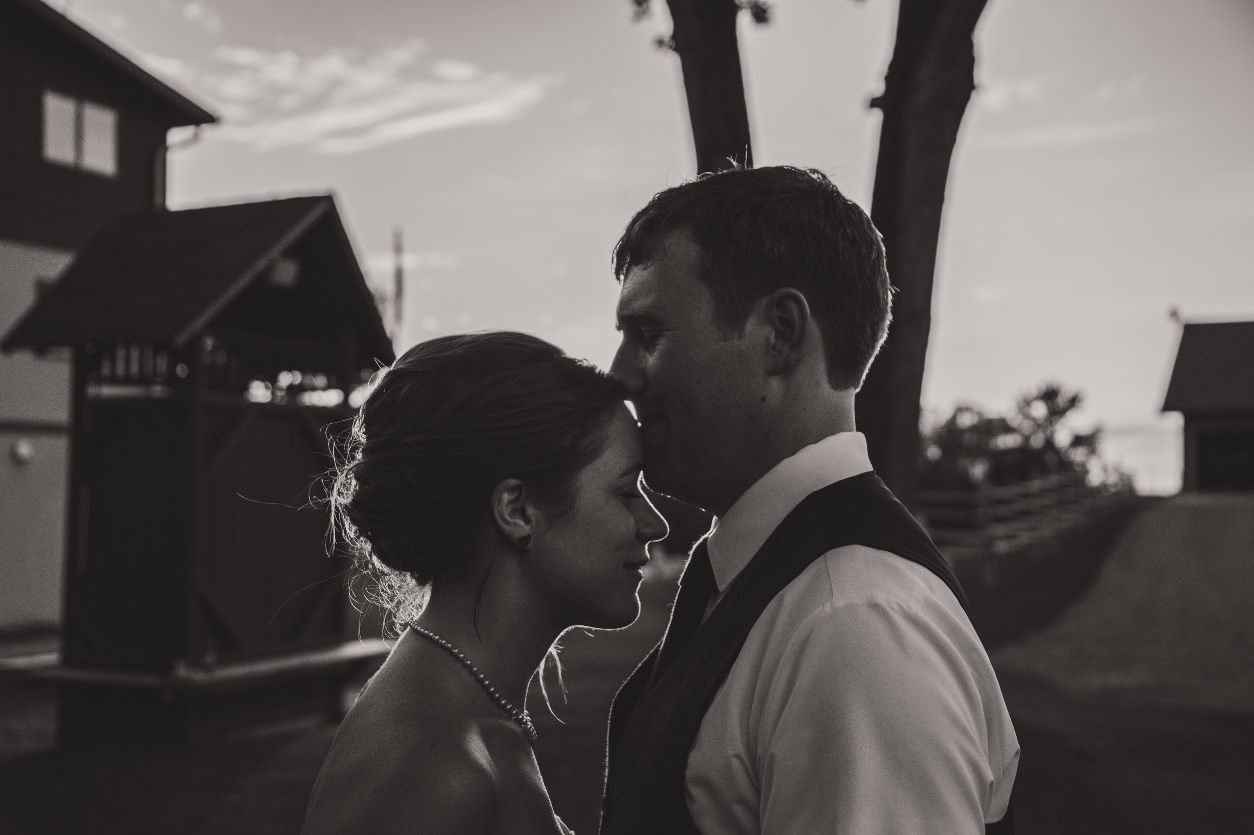 SheriCorey-Wedding-June242017-Evening-Portraits-00002.jpg