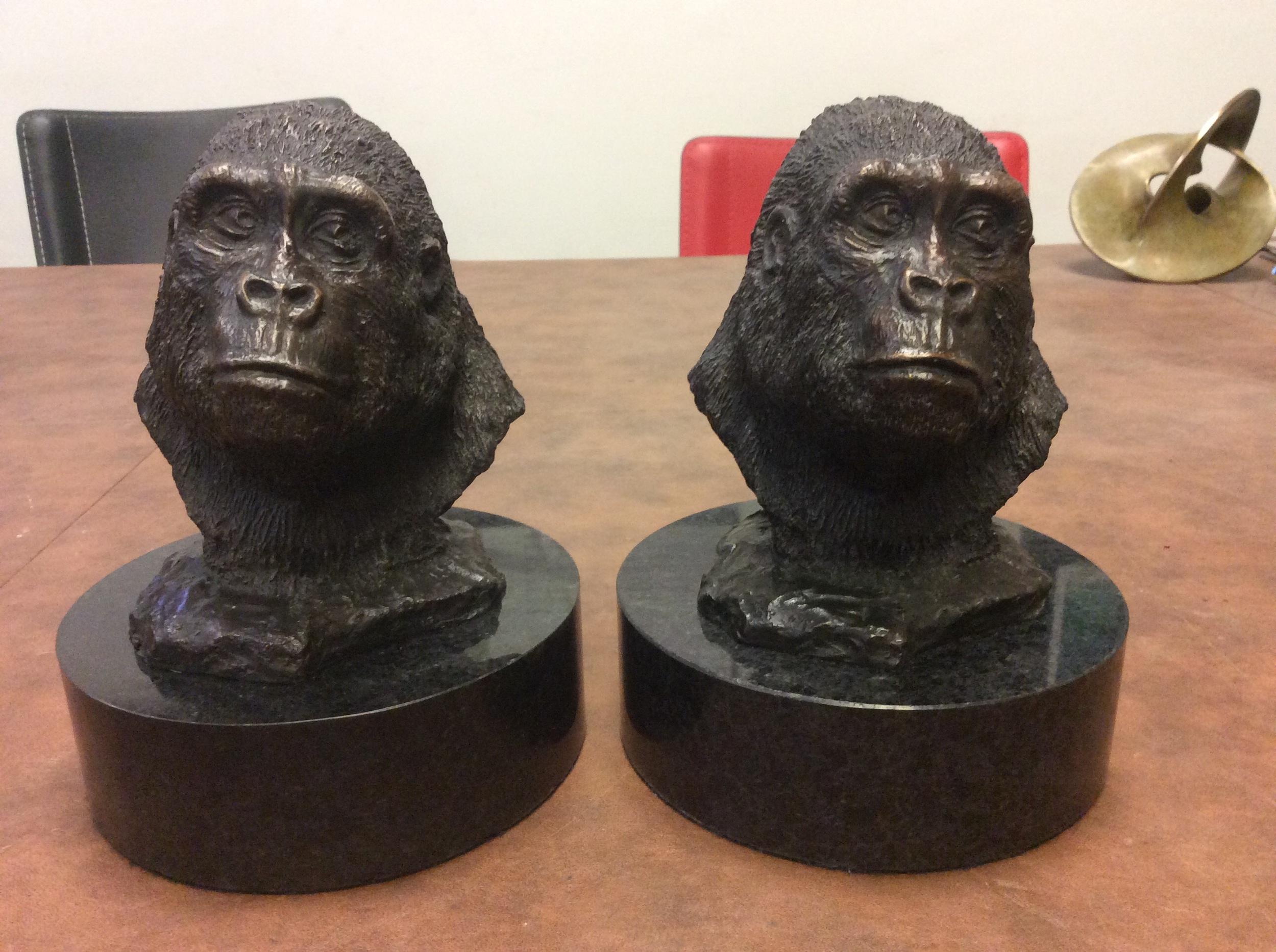 Gorilla portraits by Michael E. Wierski