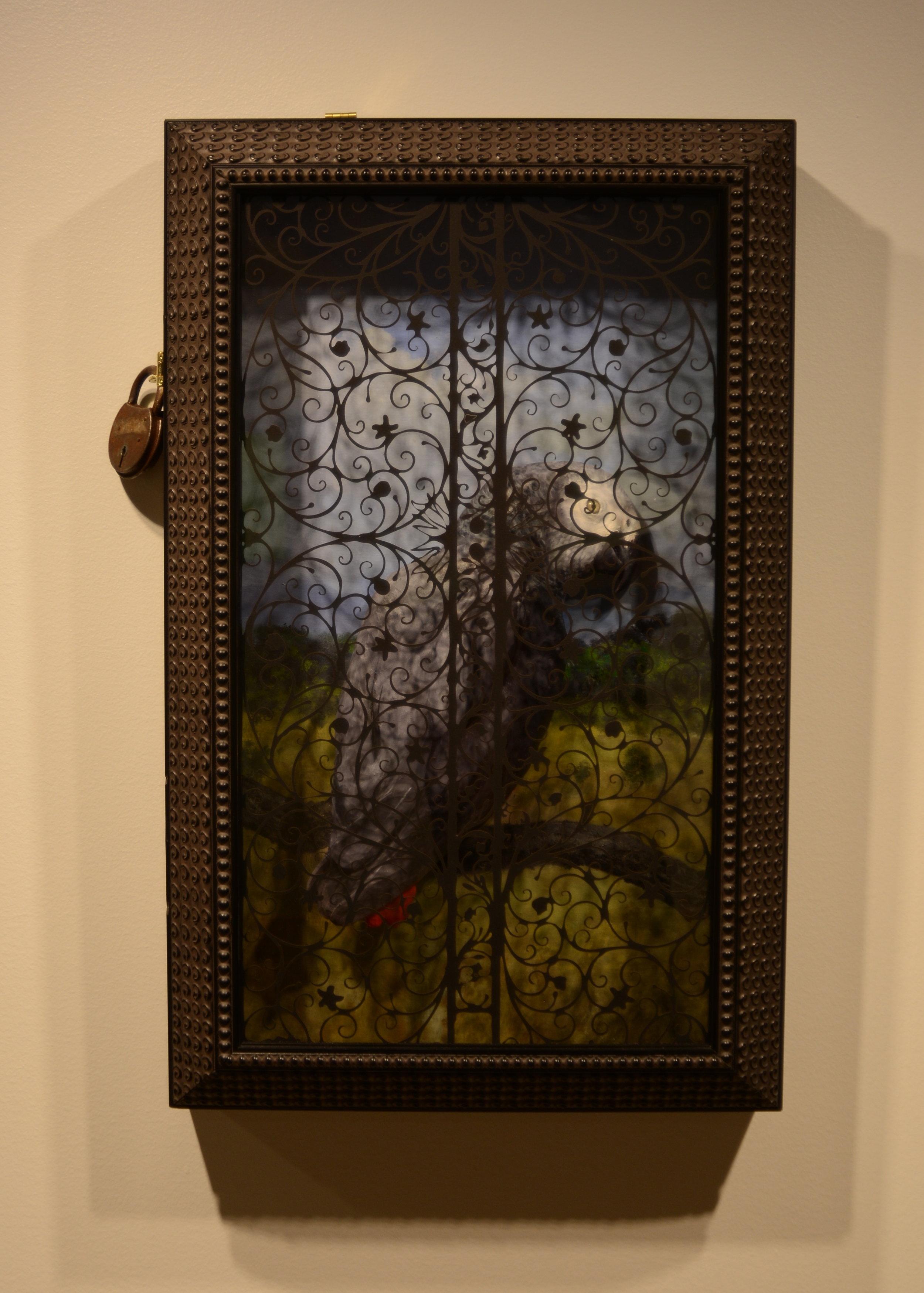 Parrot Indulgences by Nicholas Jainschigg