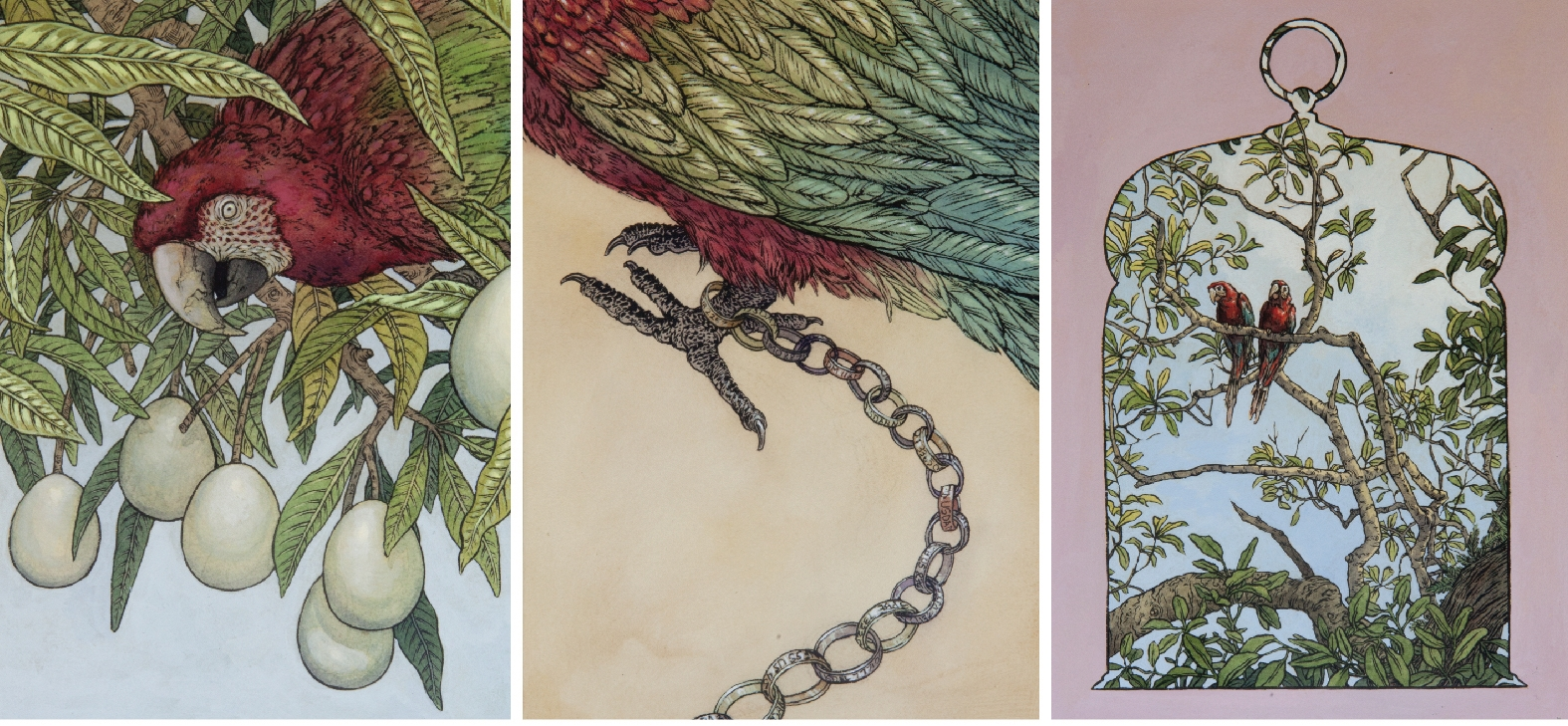 Pondering Parrots by Emily Poole