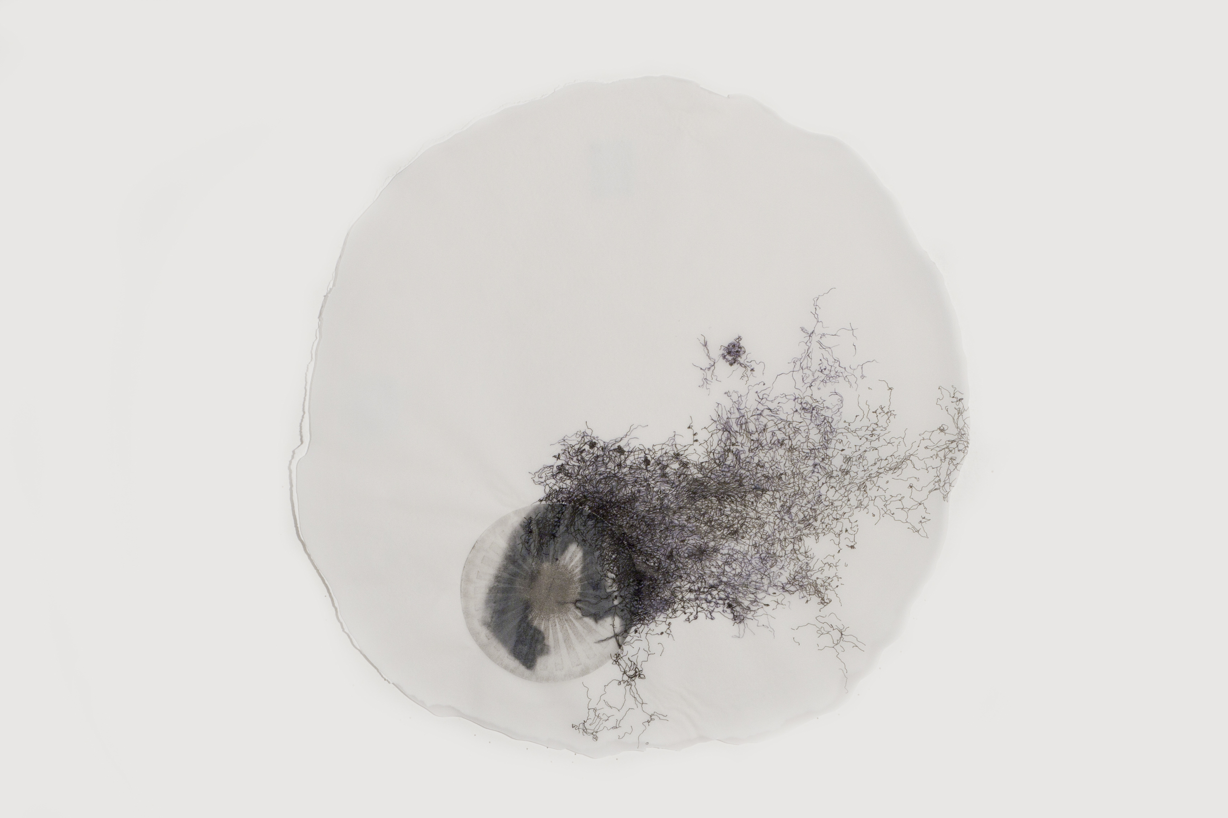 """In the Scale of Things 2   ink, collage, on vellum   12""""diameter   2010-2011"""