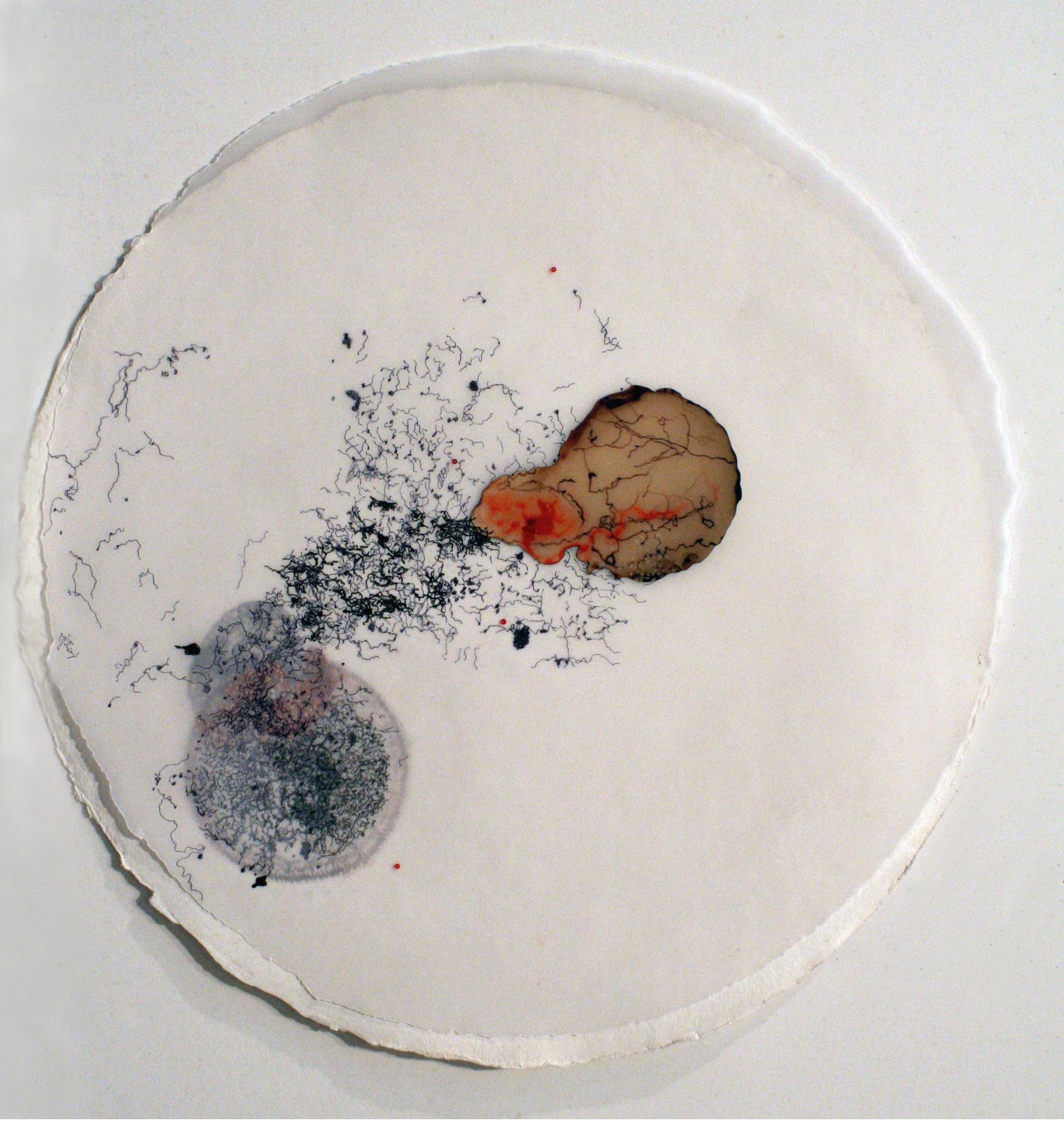 "92909 (Ménerbes)   mixed media on paper  16.5""diameter  2009"