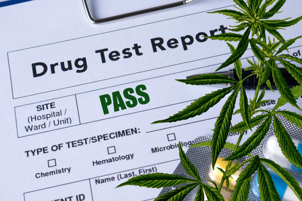 cannabis-testing.jpg