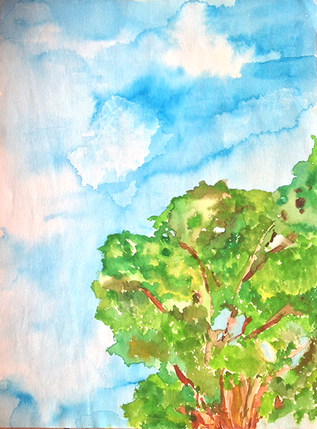 watercolorTree.png