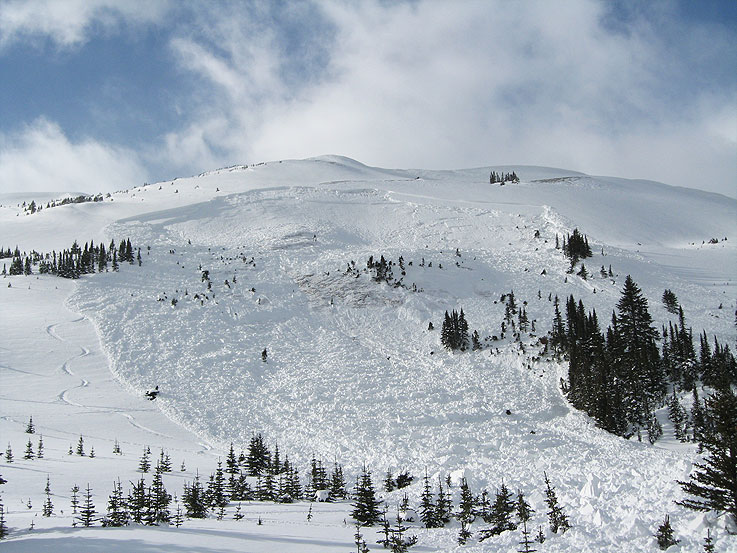 Mid Winter Avalanche Event at Aberhart in Snowbowl
