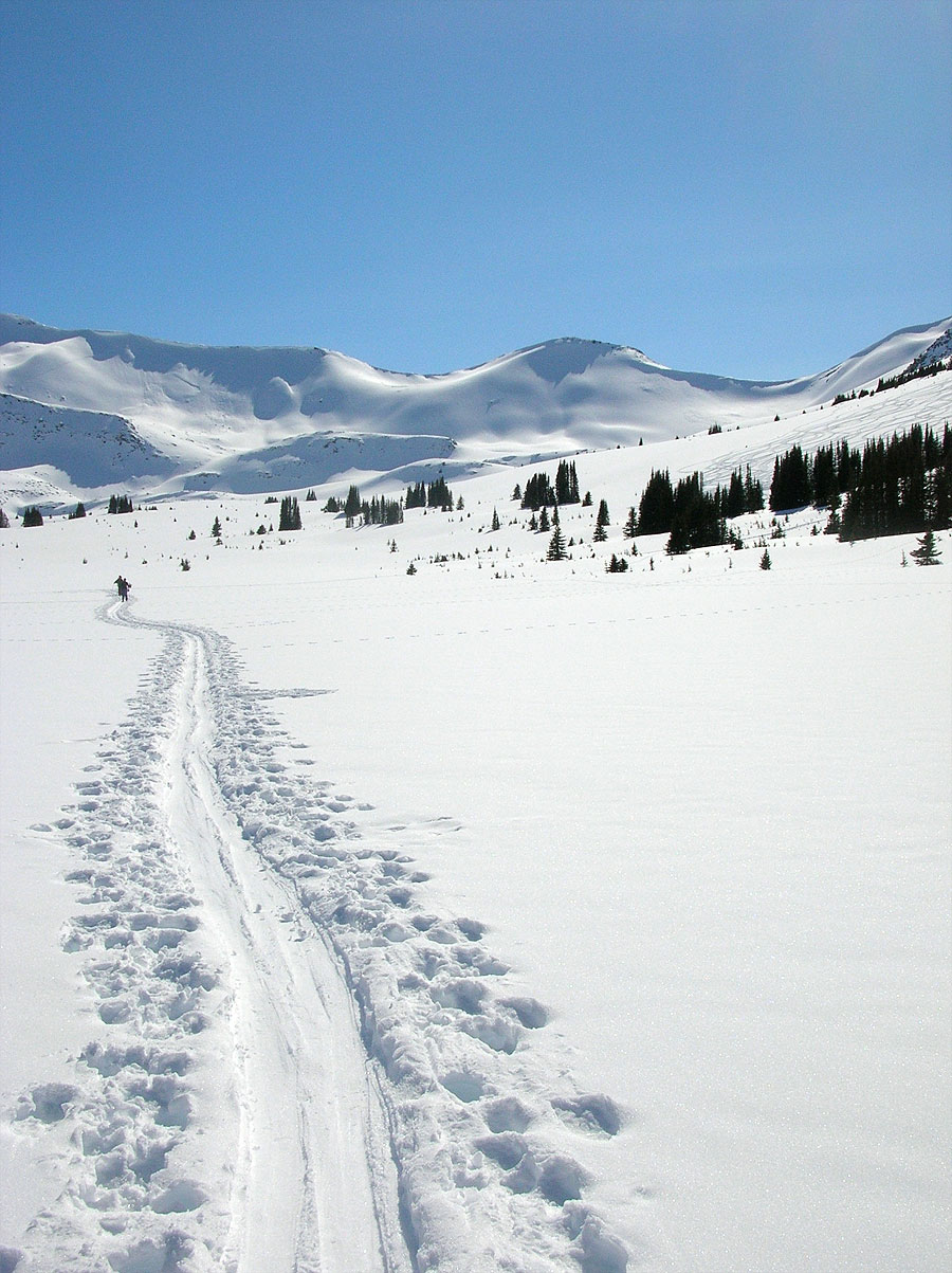 in_snowbowl.jpg