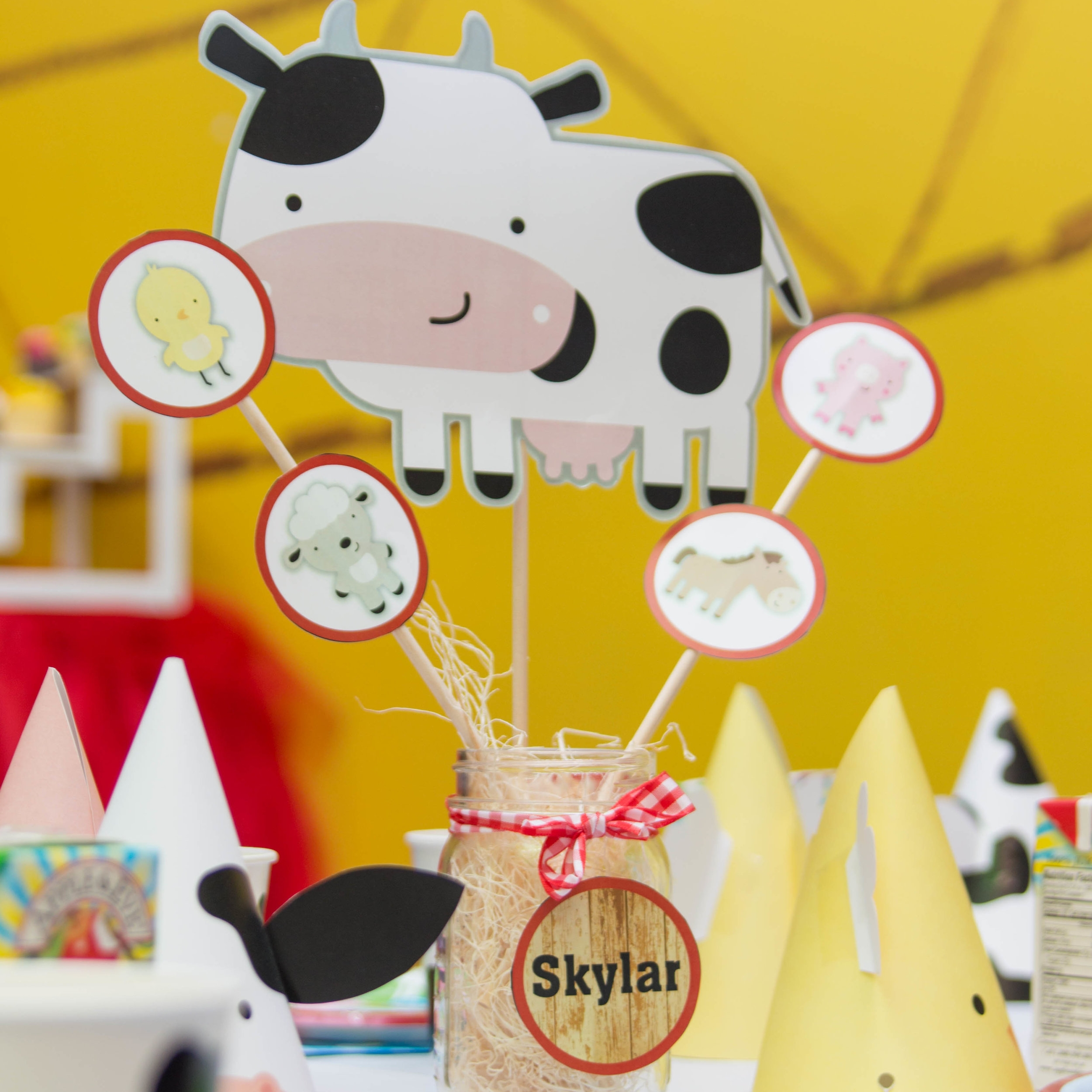 Skylar 2nd Birthday-2 (2).jpg