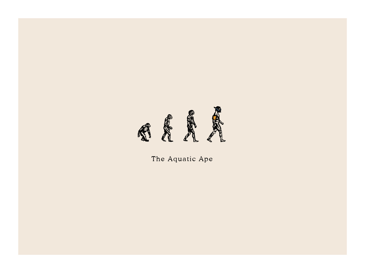 the-aquatic-ape-logo.jpg