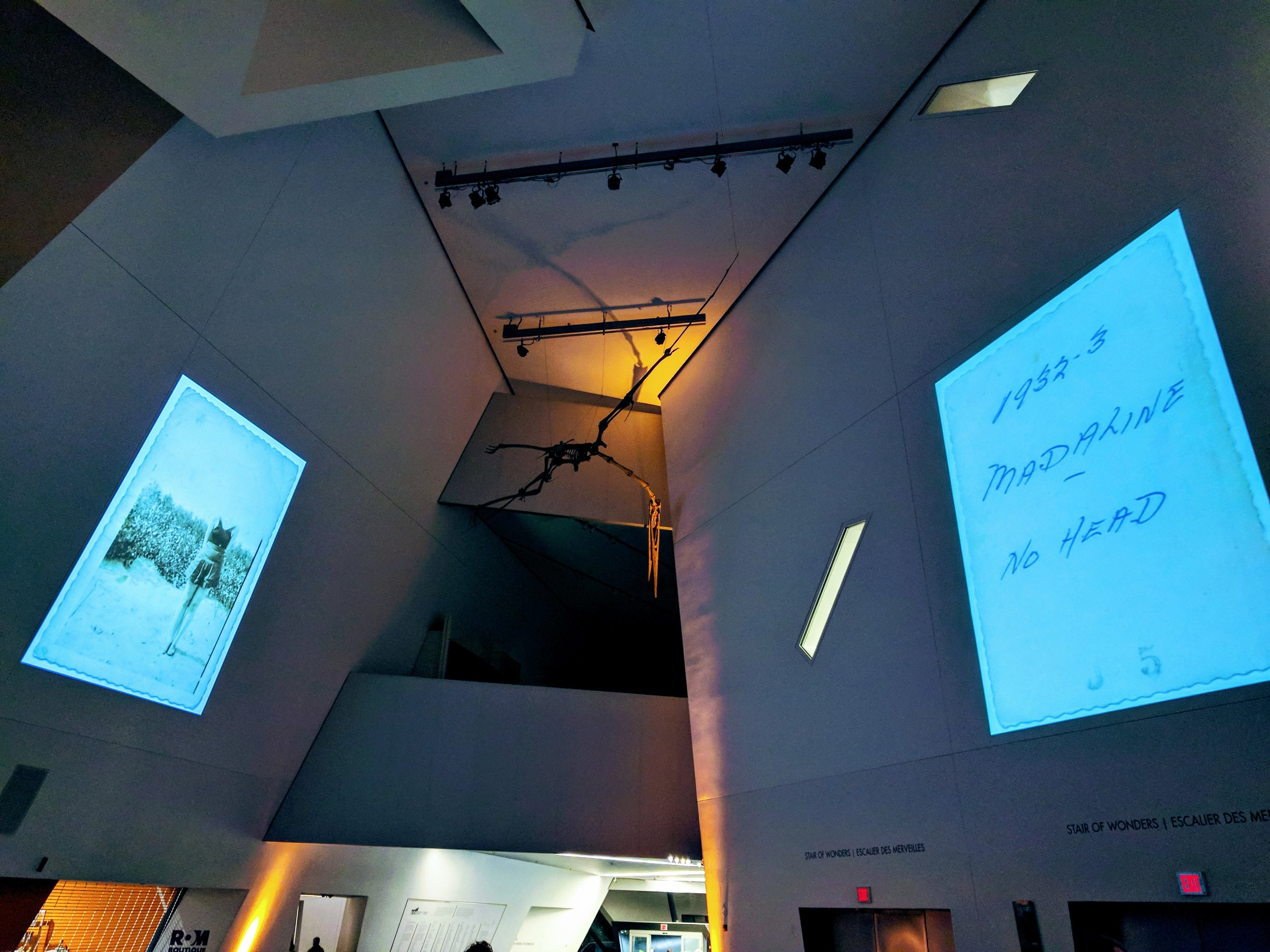 NUIT BLANCHE IMAGE PROJECTIONS AT THE ROM (J. ORPANA, 2017).