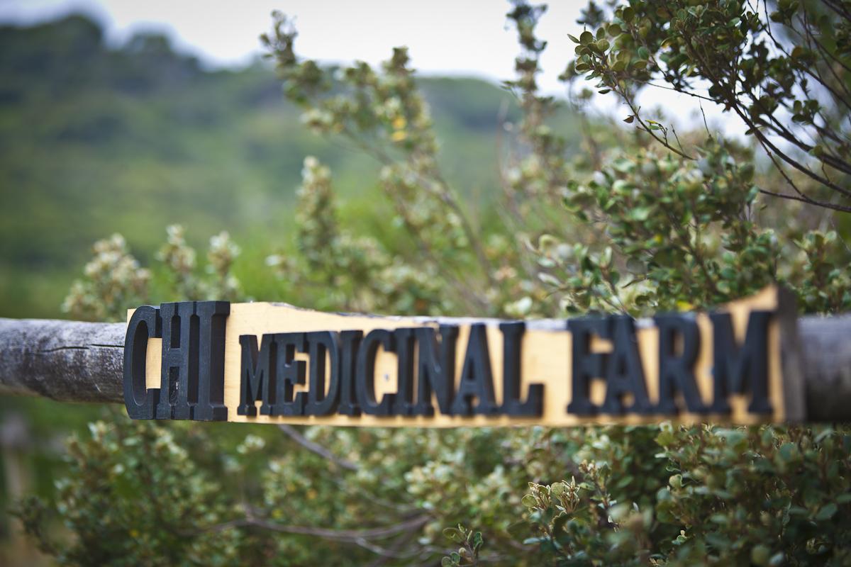 Chi Medicinal Farm | Chi Kiosk | Chi B&B