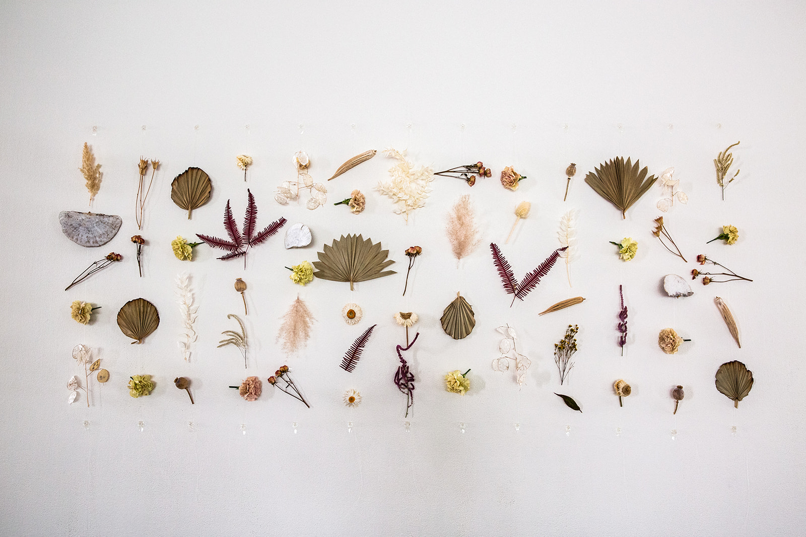 Dried_Floral_Installation_Sibyl_Sophia.jpg