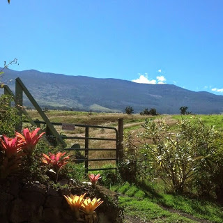 The majestic   Mt. Haleakala     beckons travelers   worldwide.