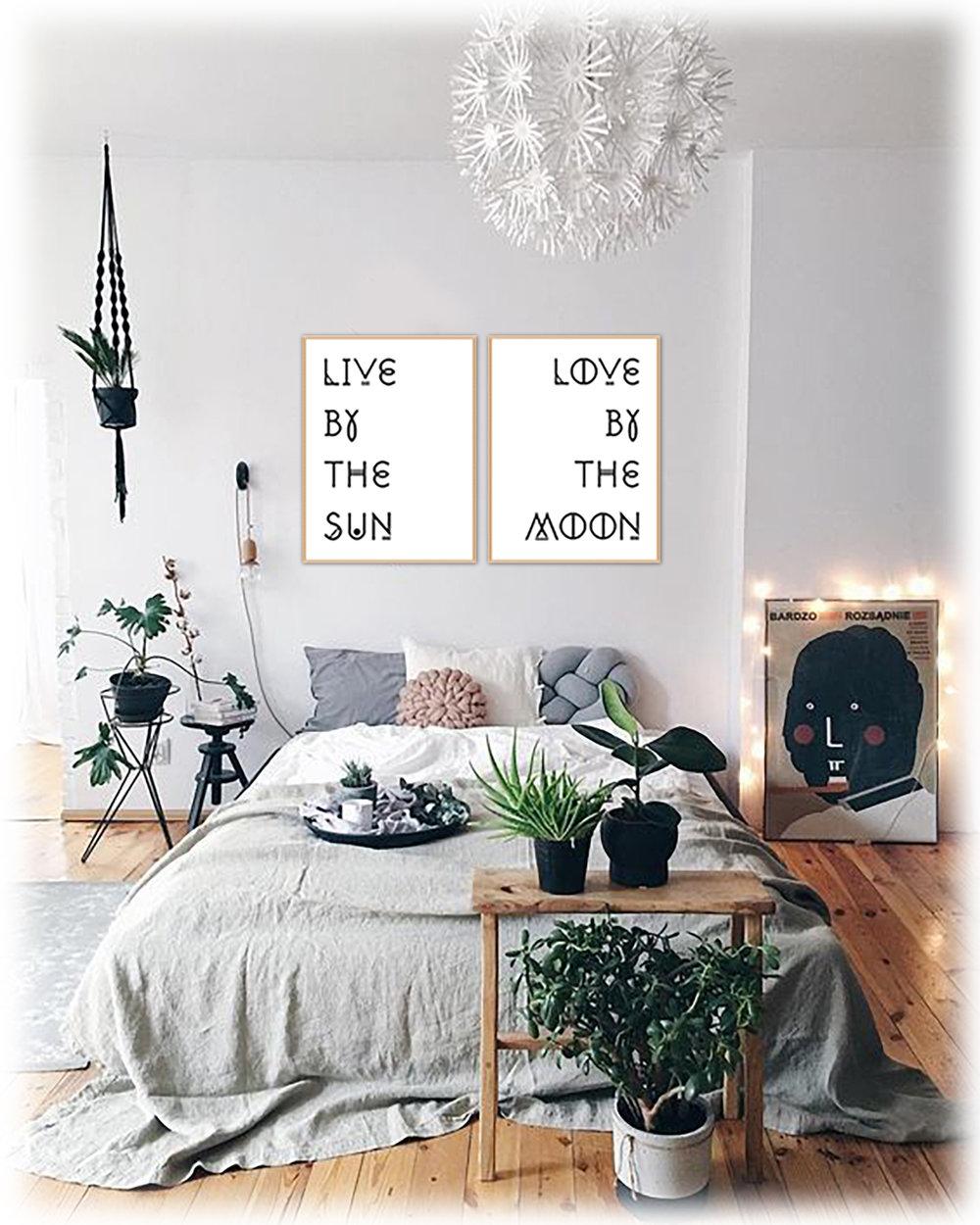 Live+Love+Sun+Moon+-+interior+copy.jpg