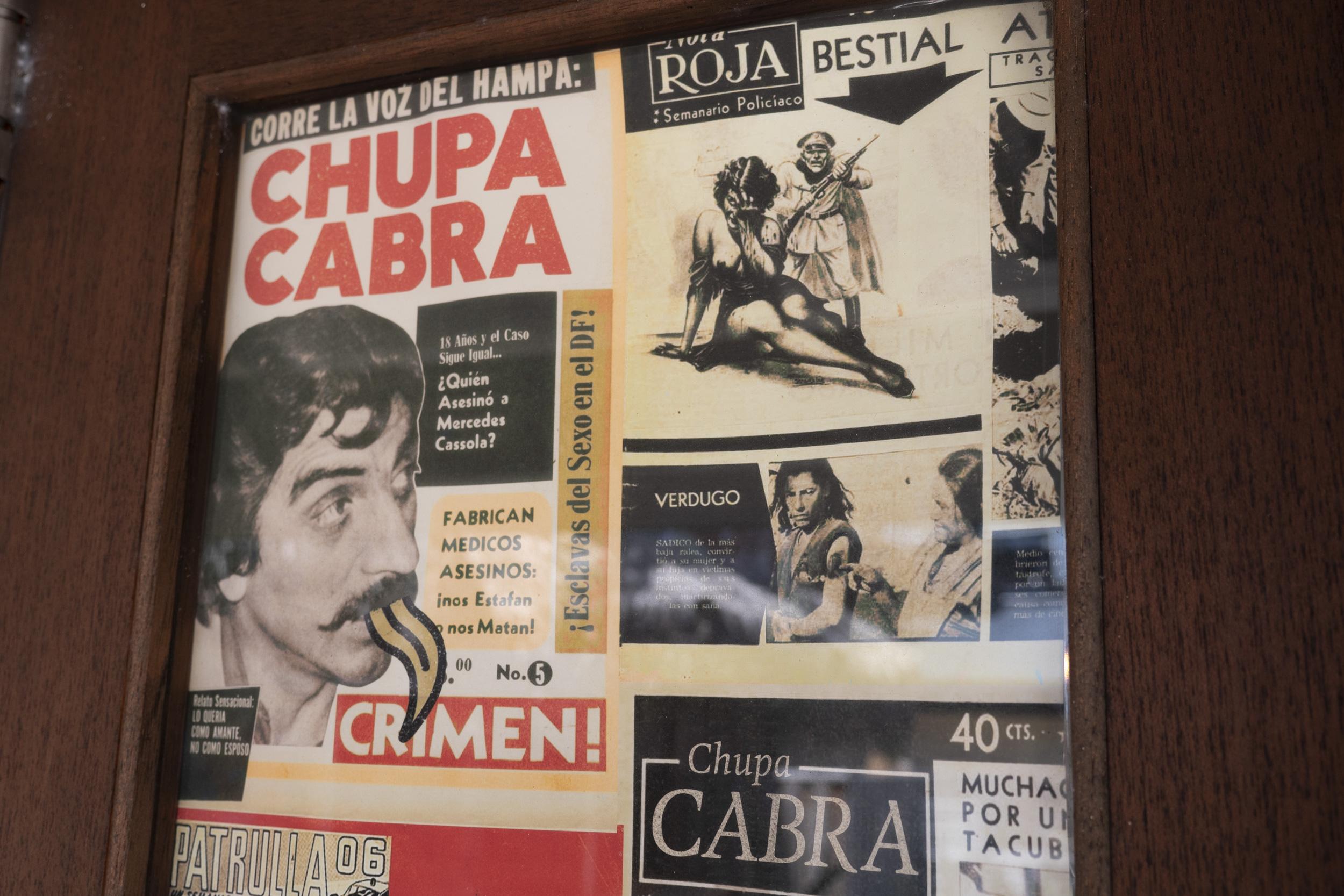 Chupacabra21.jpg
