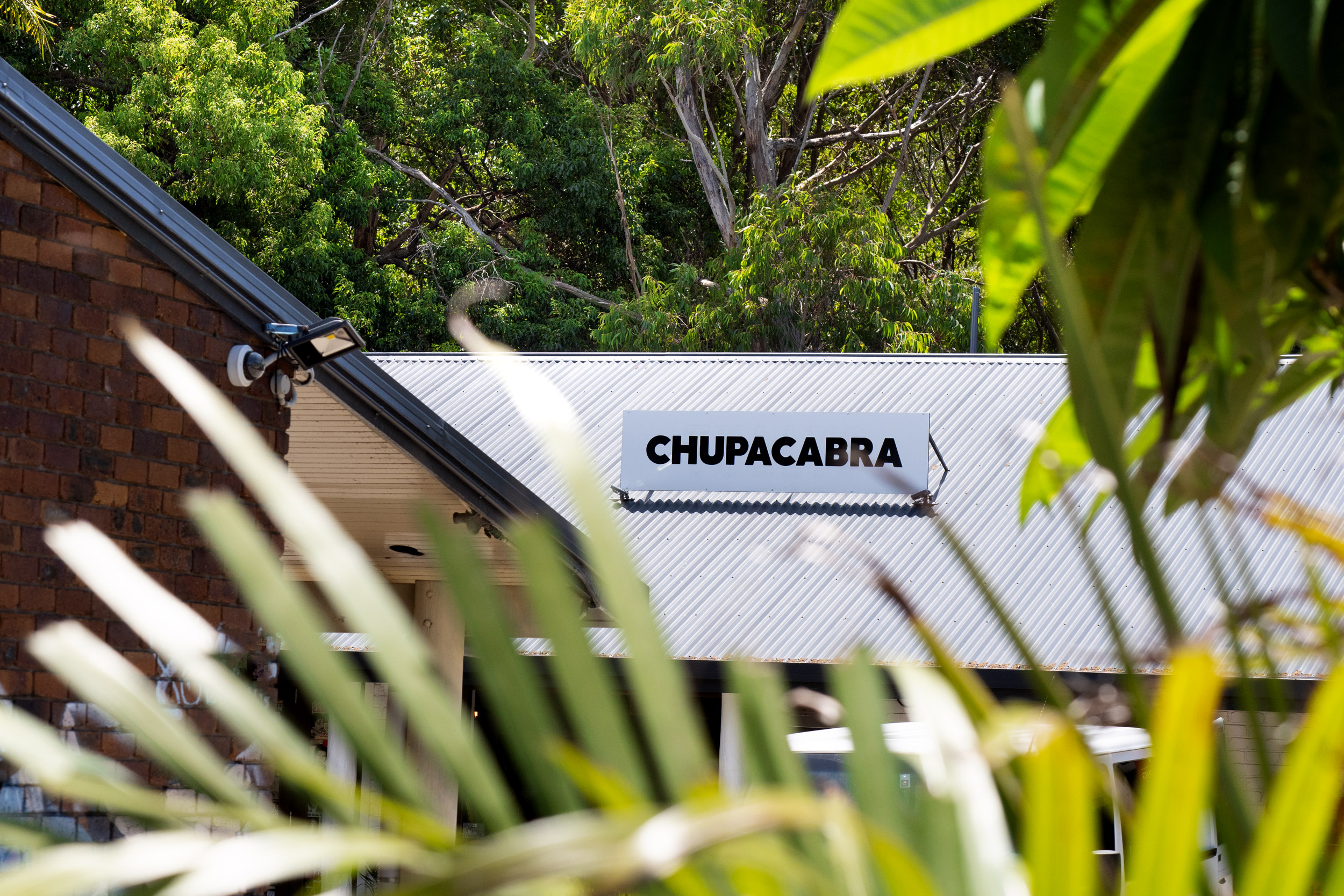 Chupacabra26.jpg