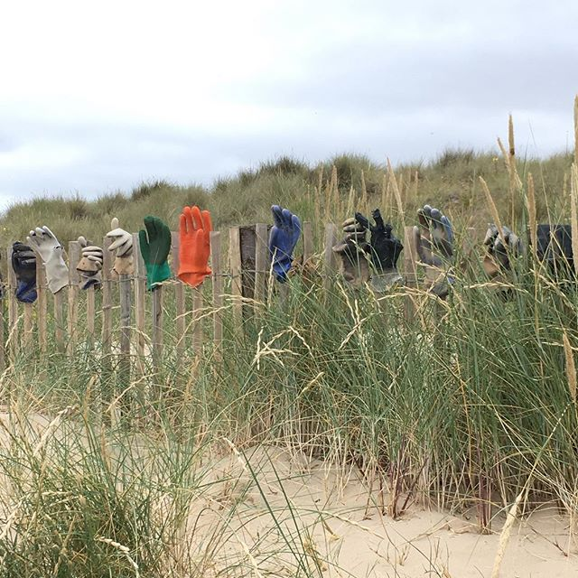 Glove anyone? Anyone recognise where this is? Clue: South south east- ish of England......