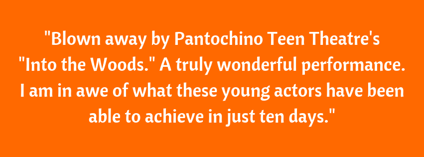 Pantochino has changed my kid's lives, and made them into true performers. They've developed a love of the stage, singing and acting, learned the responsibility of learning lines and songs, and putting on a show havi.png