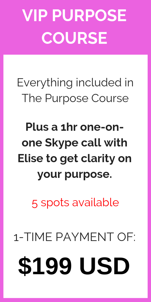 VIP Purpose course - full price.png