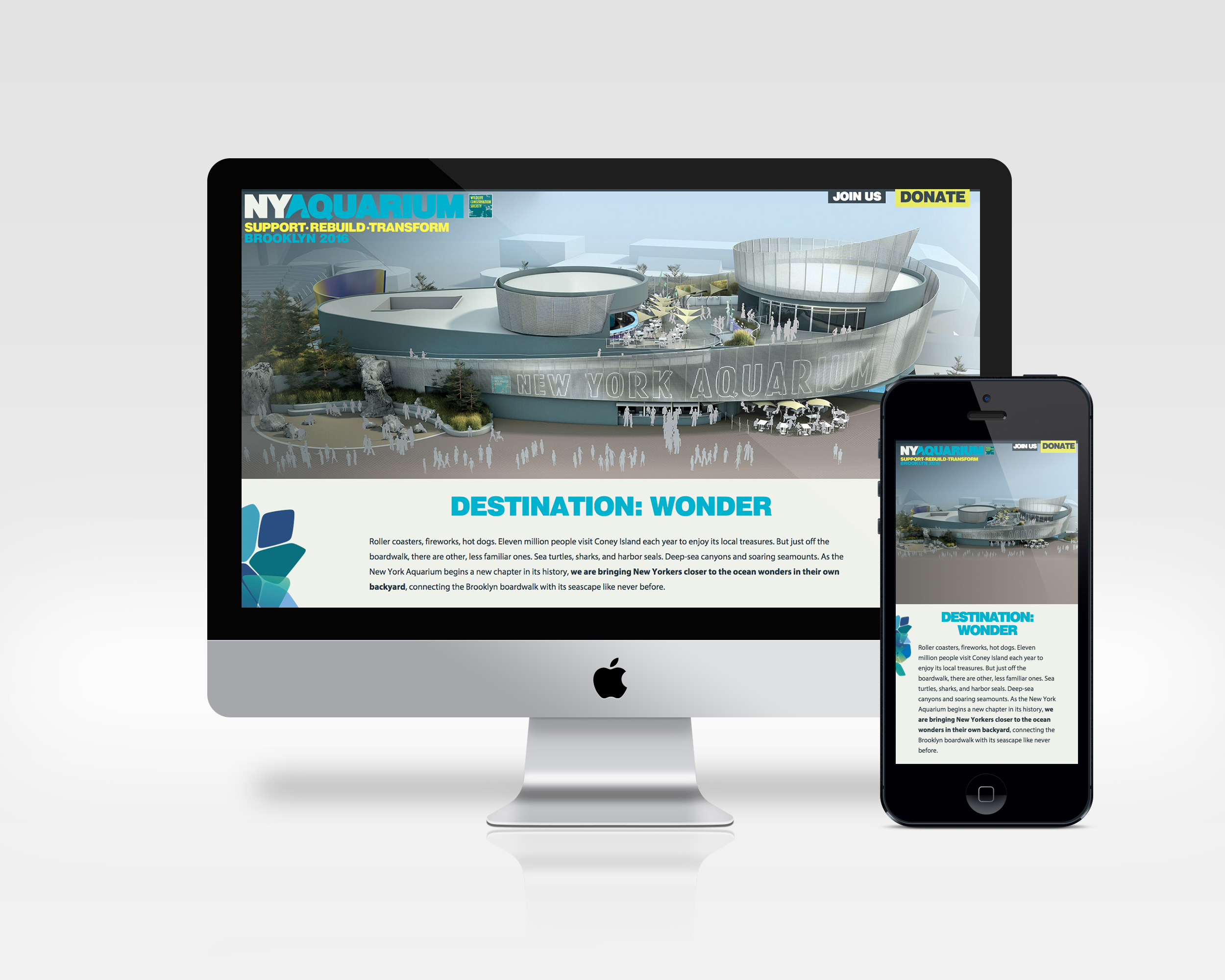 ny aquarium   design, ux, development   Microsite for the NY Aquarium's rebuilding & transformation campaign.   View Project