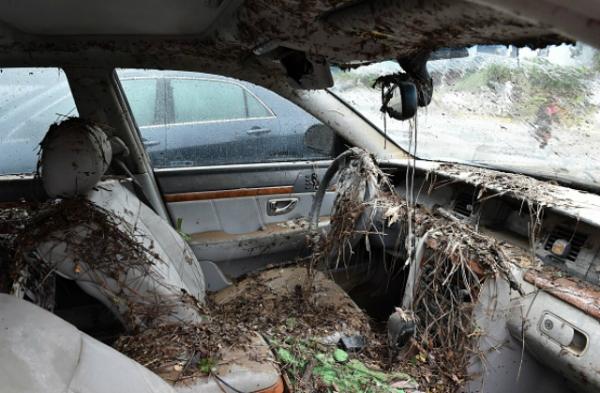 flood car 001.jpg