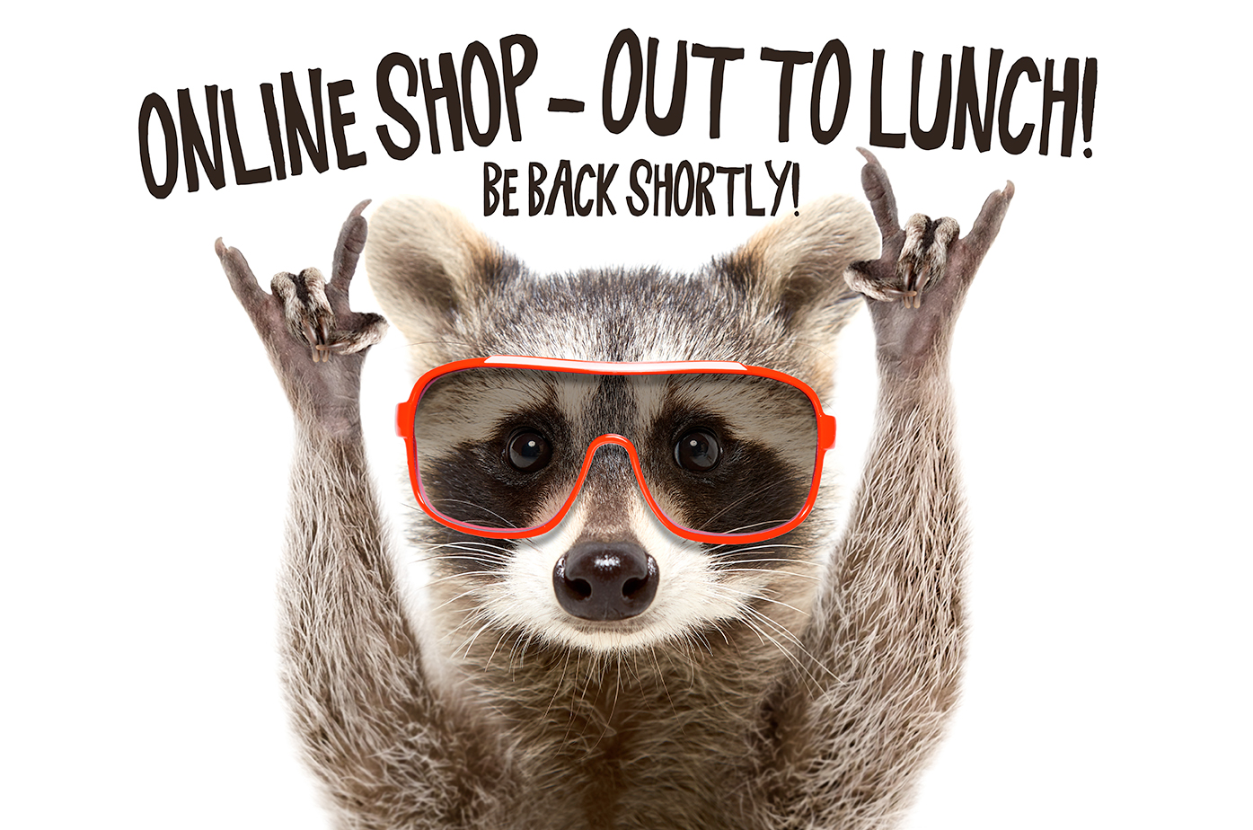 RACCOON-OUT-TO-LUNCH.jpg